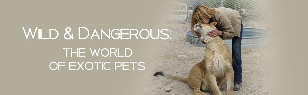 Wild-&-Dangerous.png