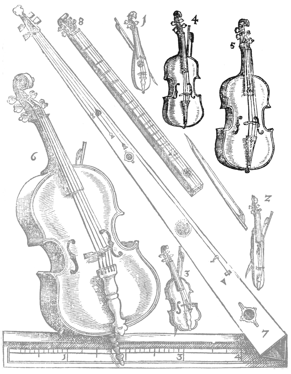 The Violin Family