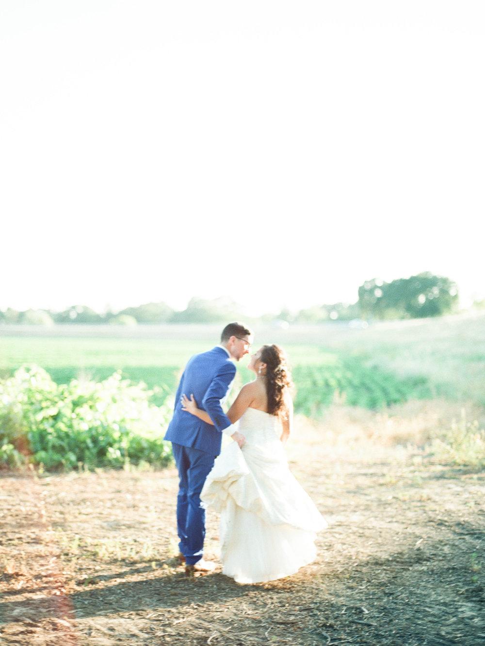 Scribner Bend Vineyard Film Wedding Photographer