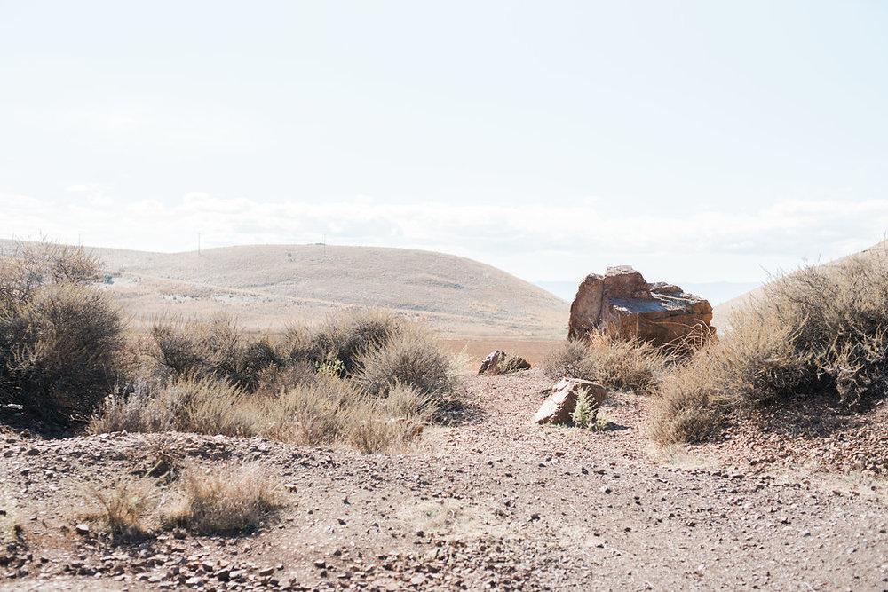 JennySoiPhotography-CayoteRegionalPark-22.jpg