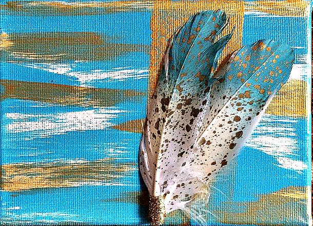Feather Blue Gold Combo_filters.jpg