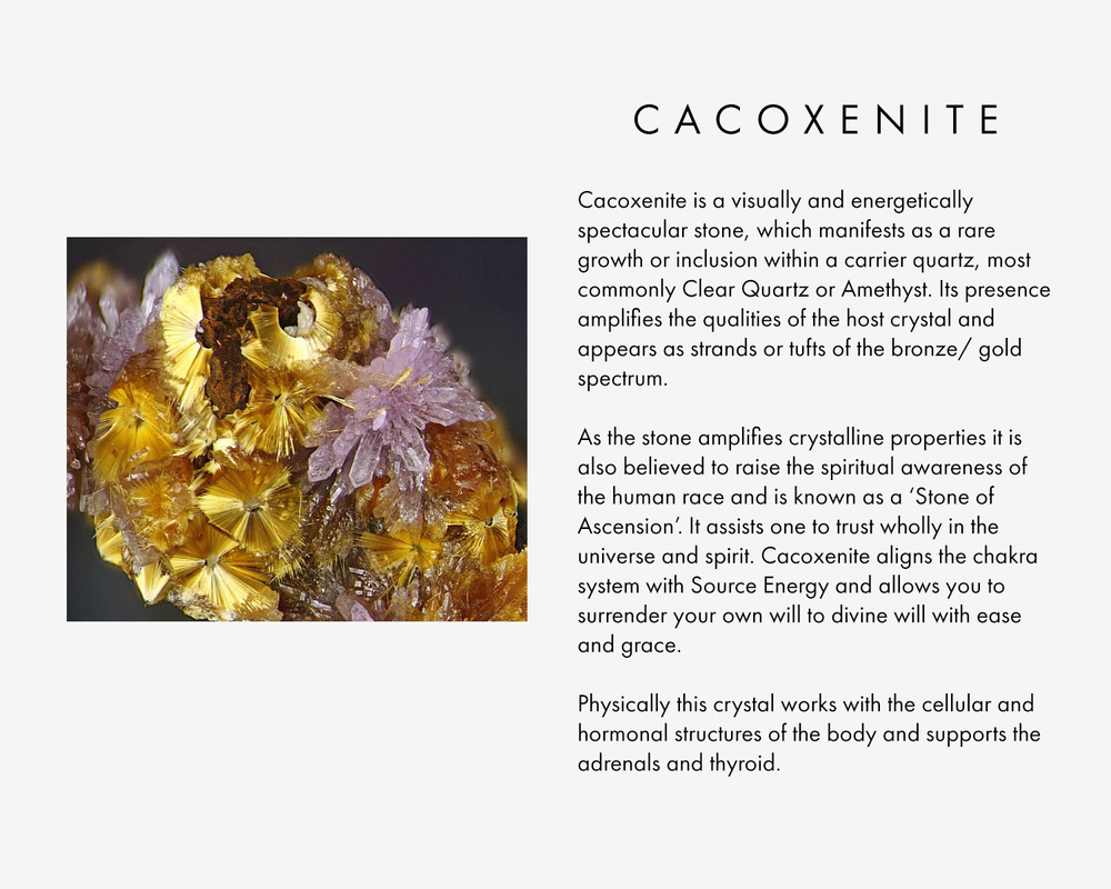 Cacoxenite is a visually and energetically spectacular stone, which manifests as a rare growth or inclusion within a carrier quartz, most commonly Clear Quartz or Amethyst. Its presence amplifies the qualities of the host crystal and appears as strands or tufts of the bronze/ gold spectrum.  As the stone amplifies crystalline properties it is also believed to raise the spiritual awareness of the human race and is known as a 'Stone of Ascension'. It assists one to trust wholly in the universe and spirit. Cacoxenite aligns the chakra system with Source Energy and allows you to surrender your own will to divine will with ease and grace.  Physically this crystal works with the cellular and hormonal structures of the body and supports the adrenals and thyroid.