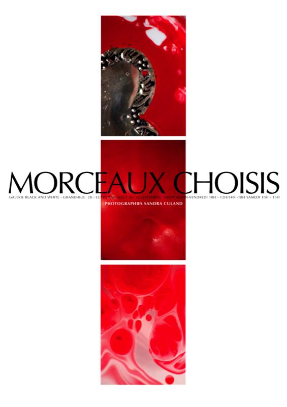 MORCEAUX CHOISIS.jpg