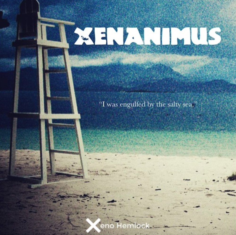"An unexpected book project - Xenanimus ""I was engulfed by the salty sea."""