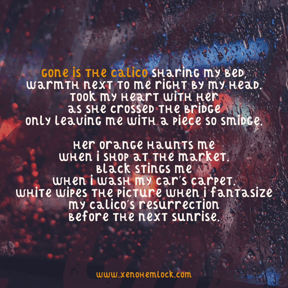 Gone is the Calico Xeno Hemlock poem.png
