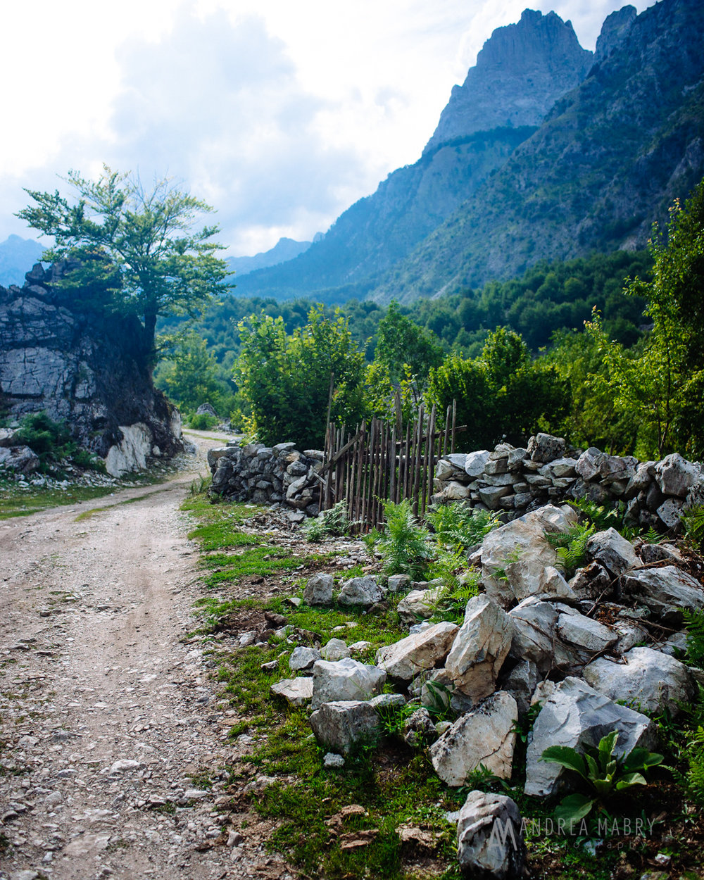 A path at the  Valbona Guesthouse . The website has tons of great information for those interested in visiting Valbona.