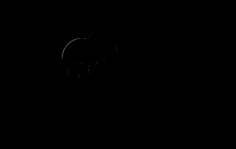 Silverback Logo HQ - Black Transparent.png