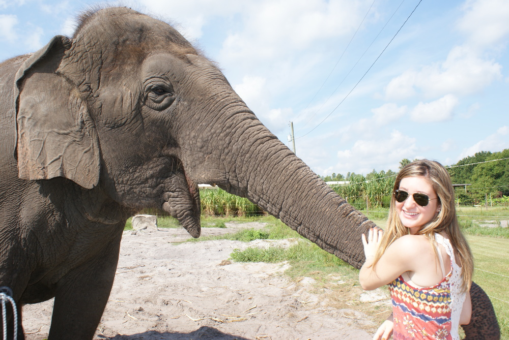 Elephant Conservation Ctr Aug 2014 054.JPG
