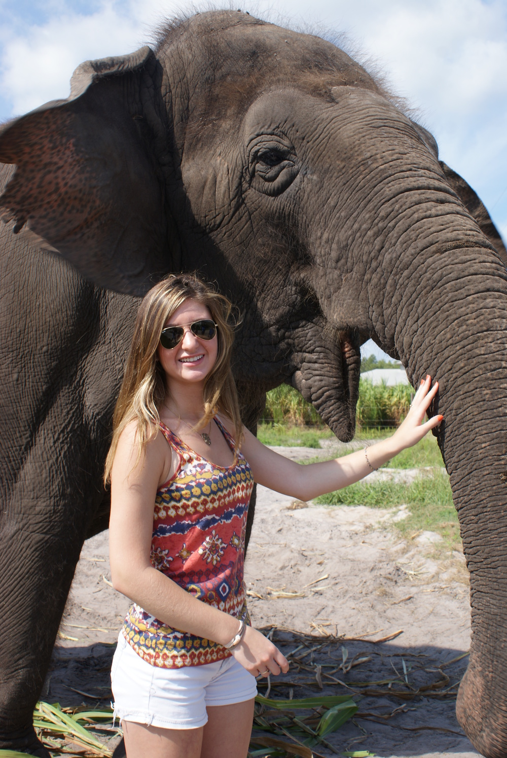 Elephant Conservation Ctr Aug 2014 060.JPG