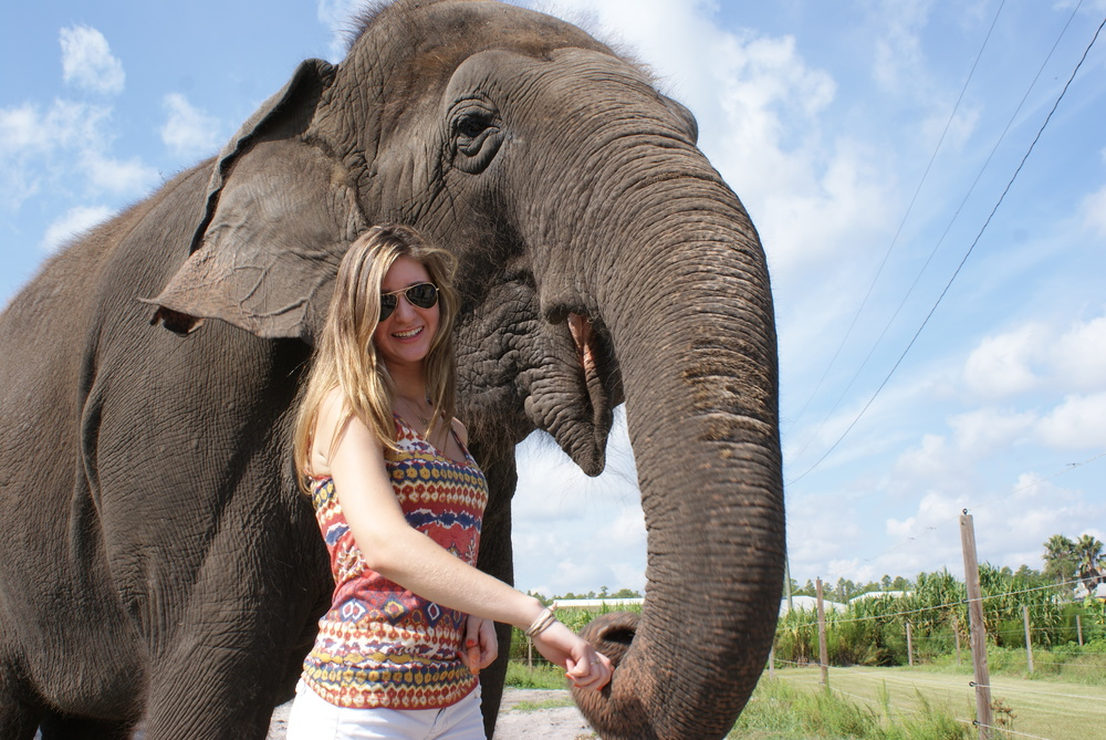 Elephant Conservation Ctr Aug 2014 064.JPG