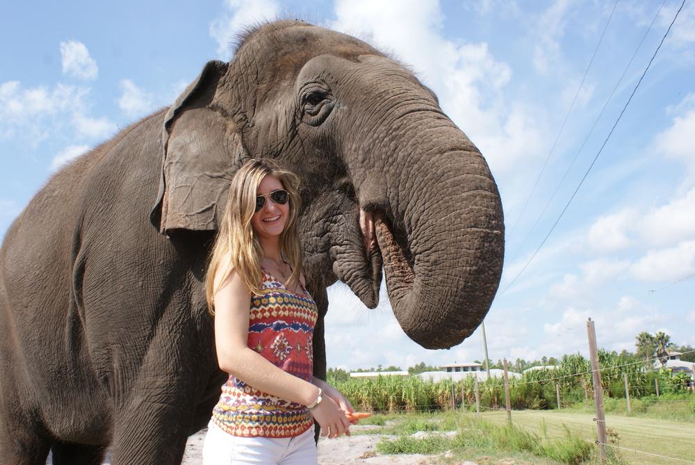 Elephant Conservation Ctr Aug 2014 065.JPG