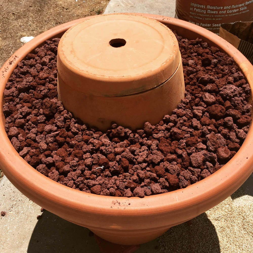 Put the lid on and fill the remaining space with lava rock or coarse vermiculite.