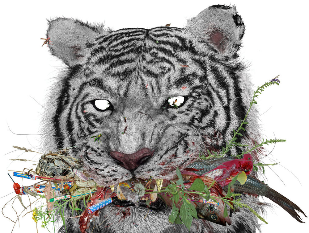 WHITE TIGER (2006) by aaron storck