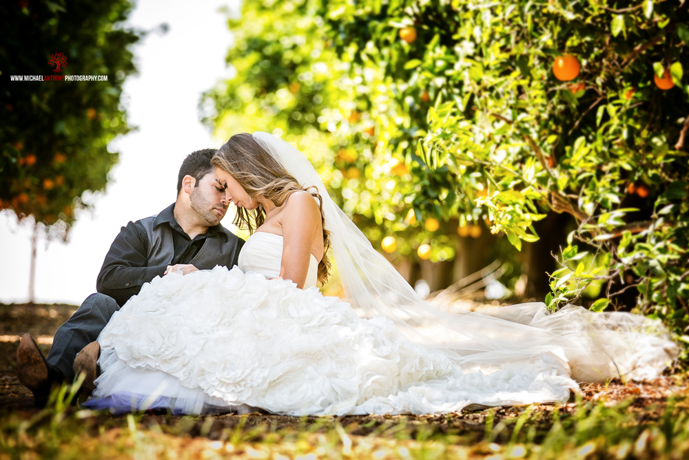 Wedding Photograph at South Coast Winery