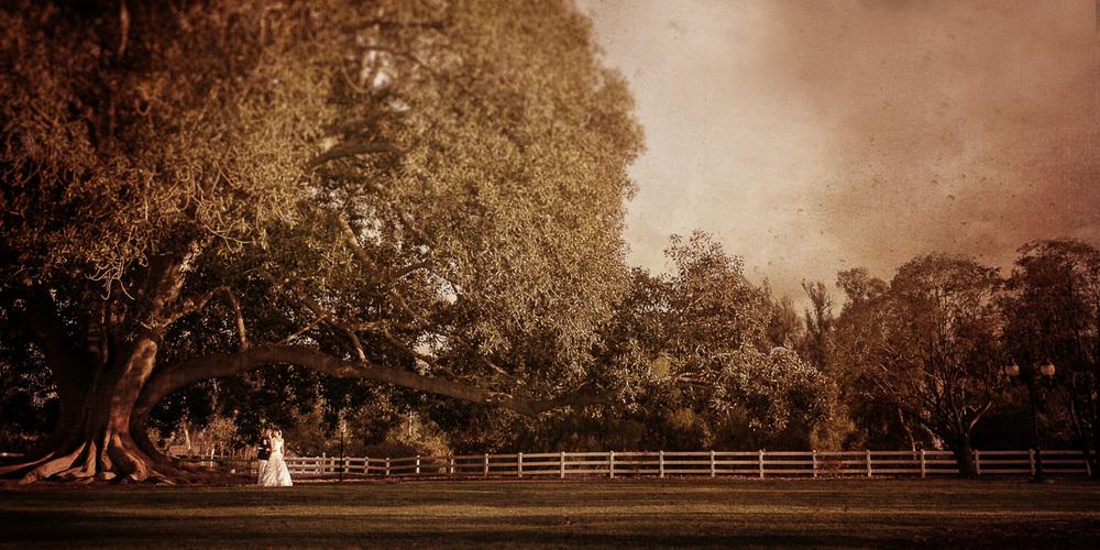 Camarillo-ranch-main-lawn-wedding-photos