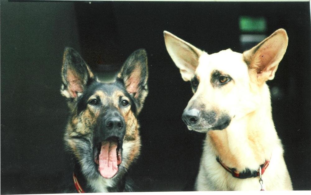 Brea & Joshua