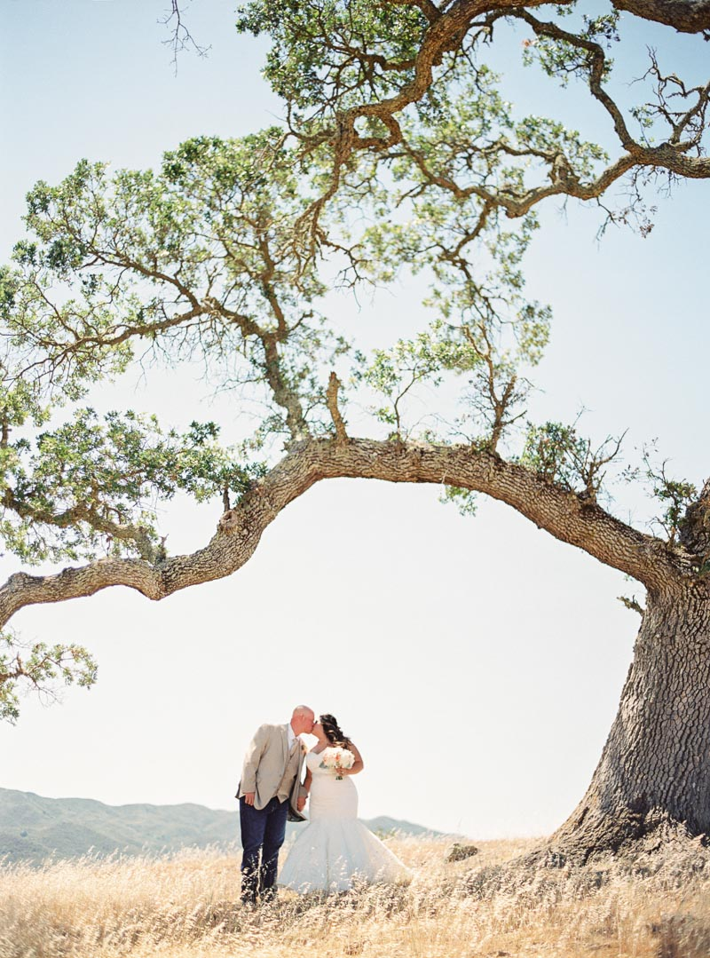 bay area film wedding photographer-15.jpg