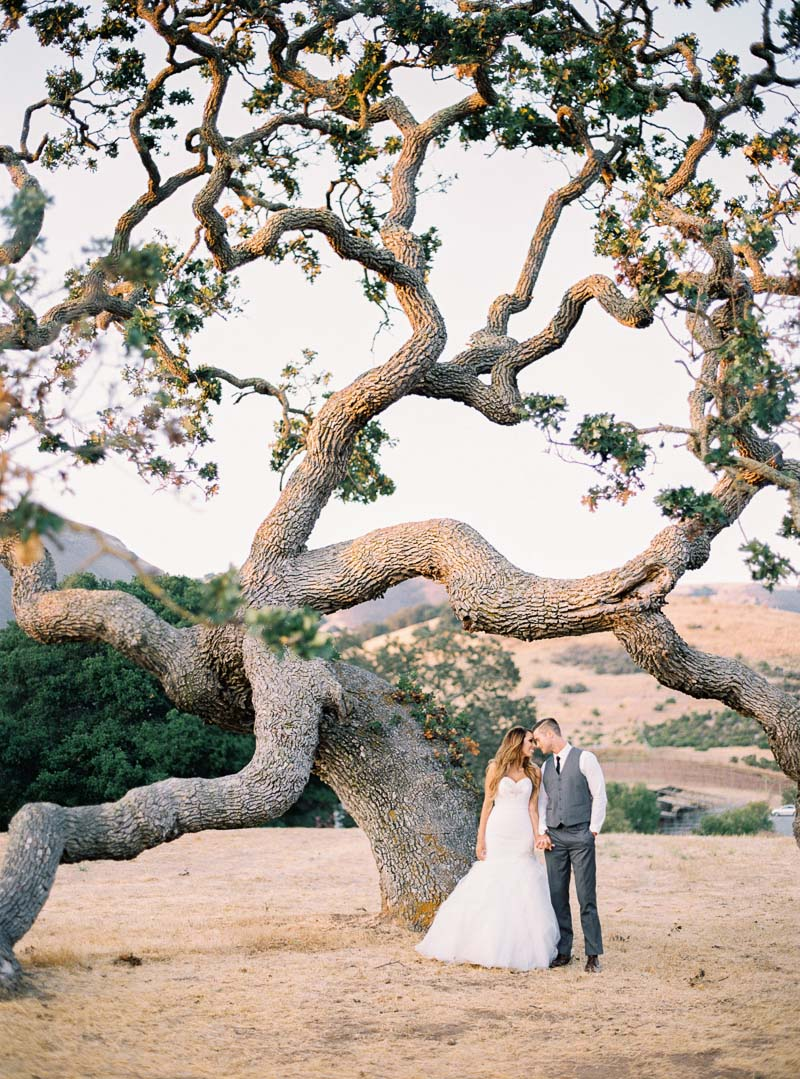Carmel wedding photographer-photo-82.jpg