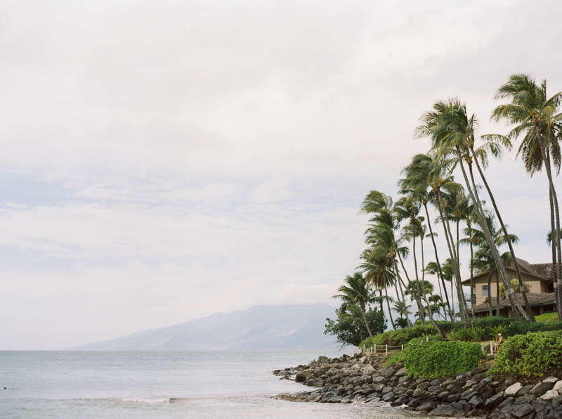 Maui wedding photographer - photo-9.jpg