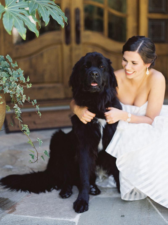 Los Gatos wedding photographer-20.jpg