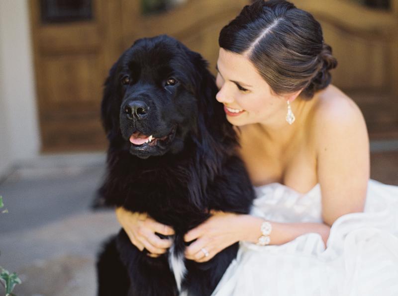 Los Gatos wedding photographer-41.jpg