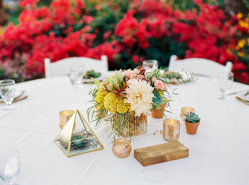 Santa Cruz wedding-187.jpg
