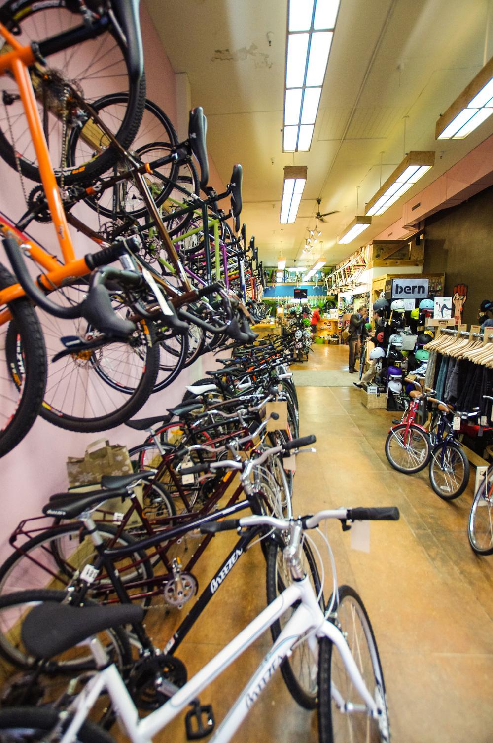 BikeRevs-3.jpg