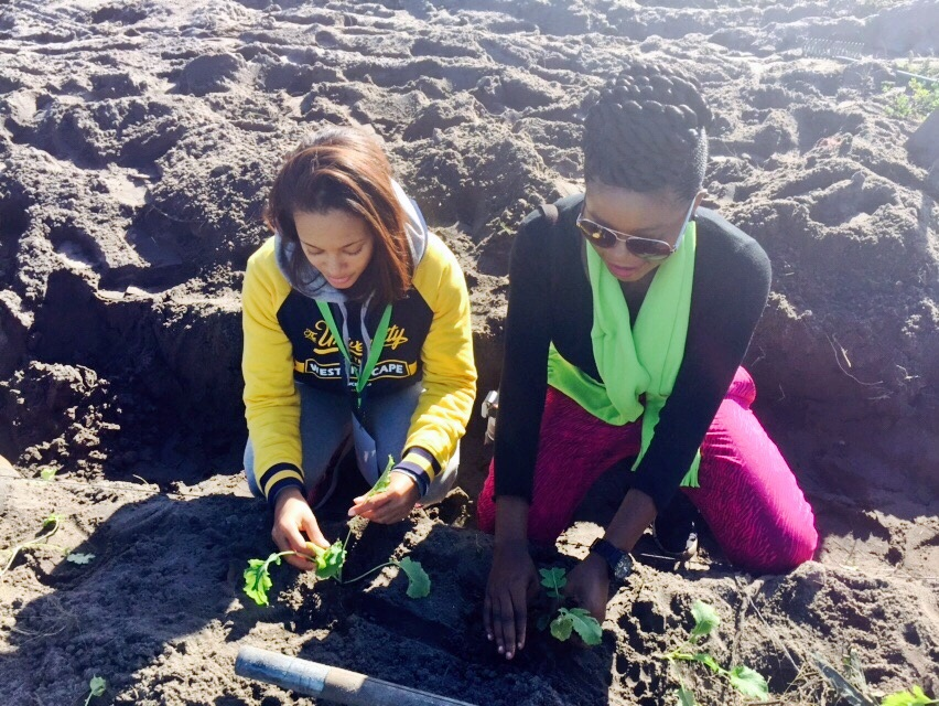 Adenike Akinsemolu and a student of UWC planting at the Organic Food Market in Gugulethu as part of community engagement during the conference