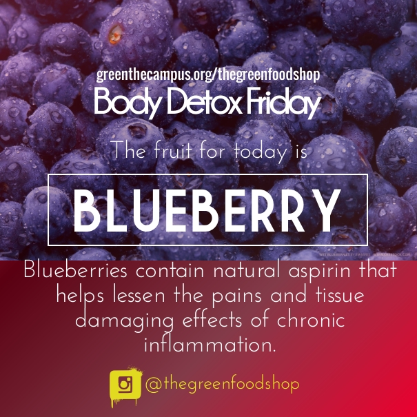 green-campus-initiative-friday-blueberry-greenfood-shop