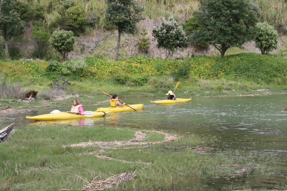 There are great bays to kayak, various providers are listed on our site.
