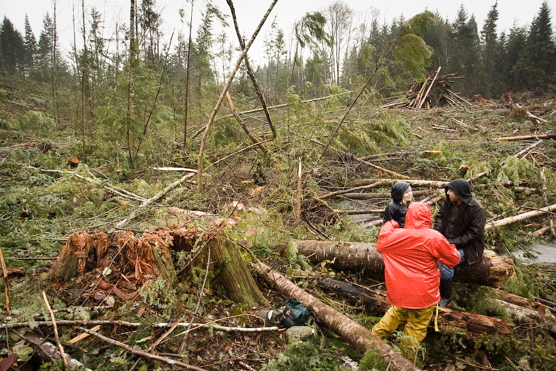 Muir_Creek_Logging-10