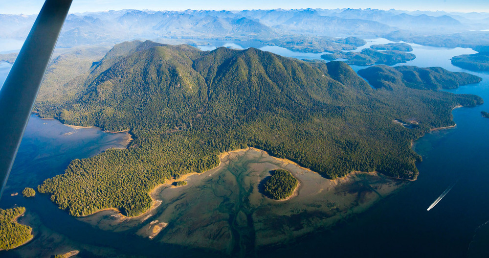 Meares Island rainforest in Clayoquot Sound tofino aerial