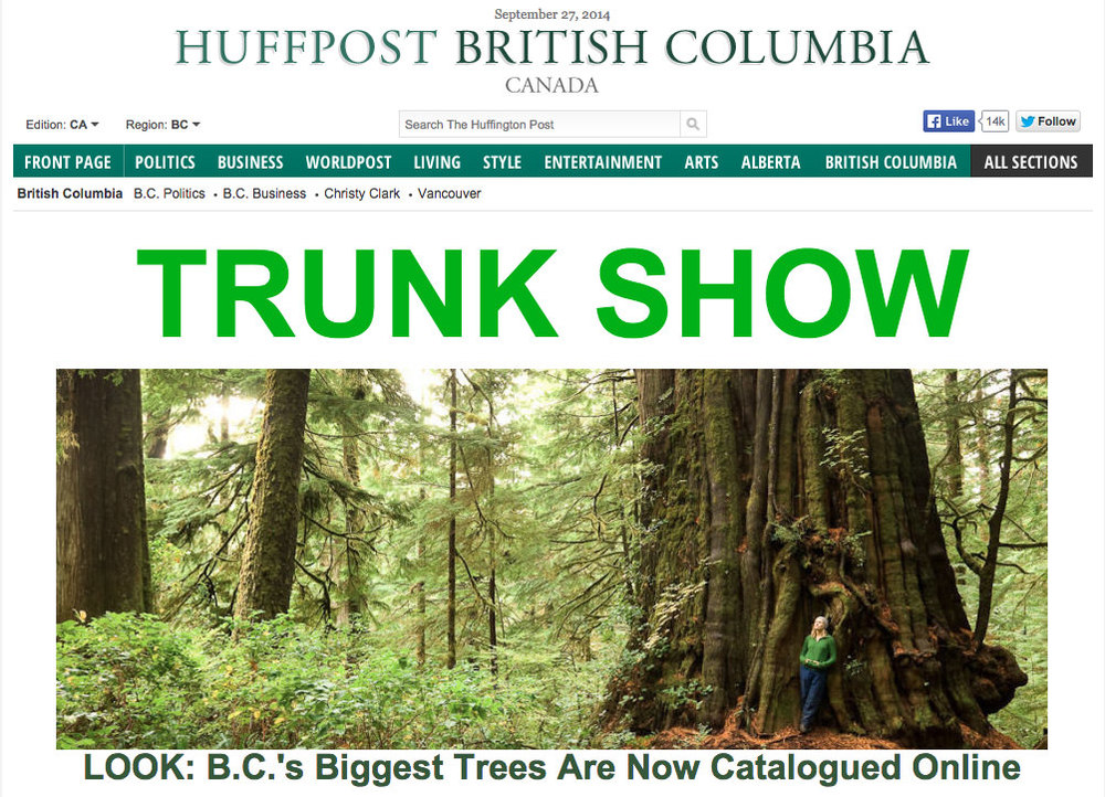 2014 - Sept Huffington Post Trees.jpg