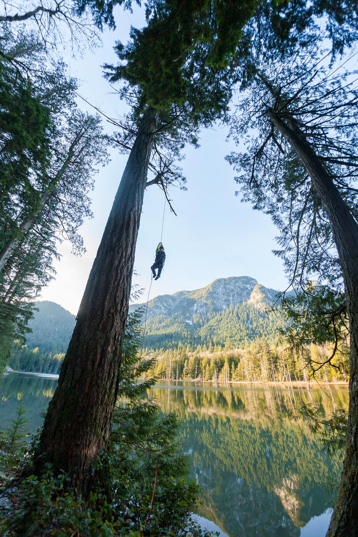 tree-climber-at-echo-lake.jpg