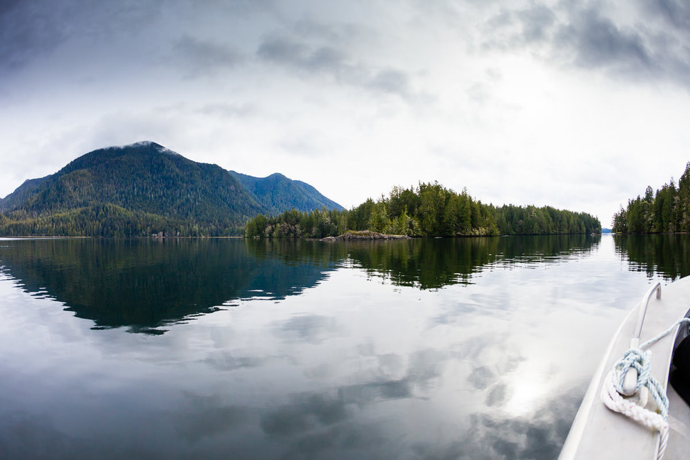 meares-island-reflection-clayoquot-sound.jpg