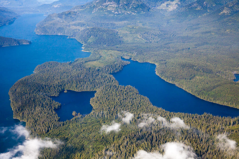 Old-growth forests around Oyees Lake (left) and Doobah Lake (right).