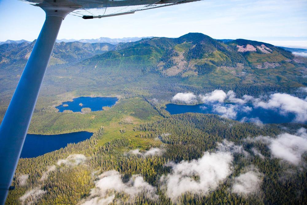 View from Nitinat Lake towards Doobah and Cheewhat Lake.