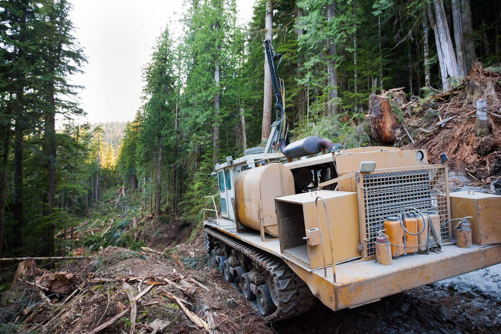 gordon-river-road-building-forest.jpg