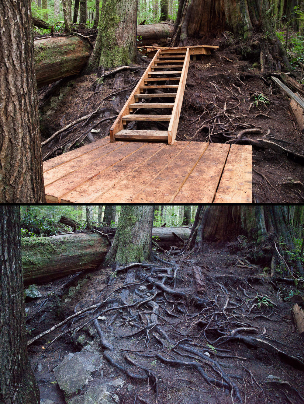 Before-After-Stairs-Side.jpg