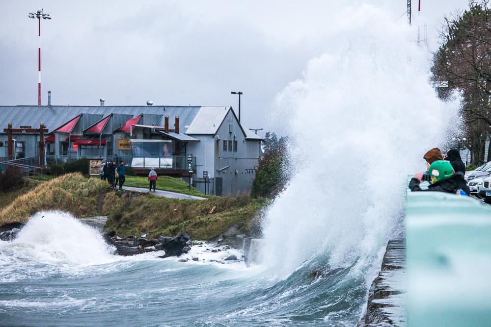 wind-storm-victoria-bc-tj-watt-35.jpg