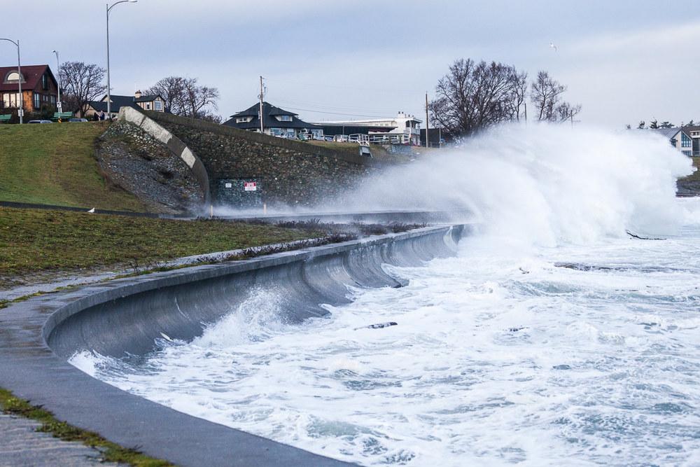 wind-storm-victoria-bc-tj-watt-286.jpg