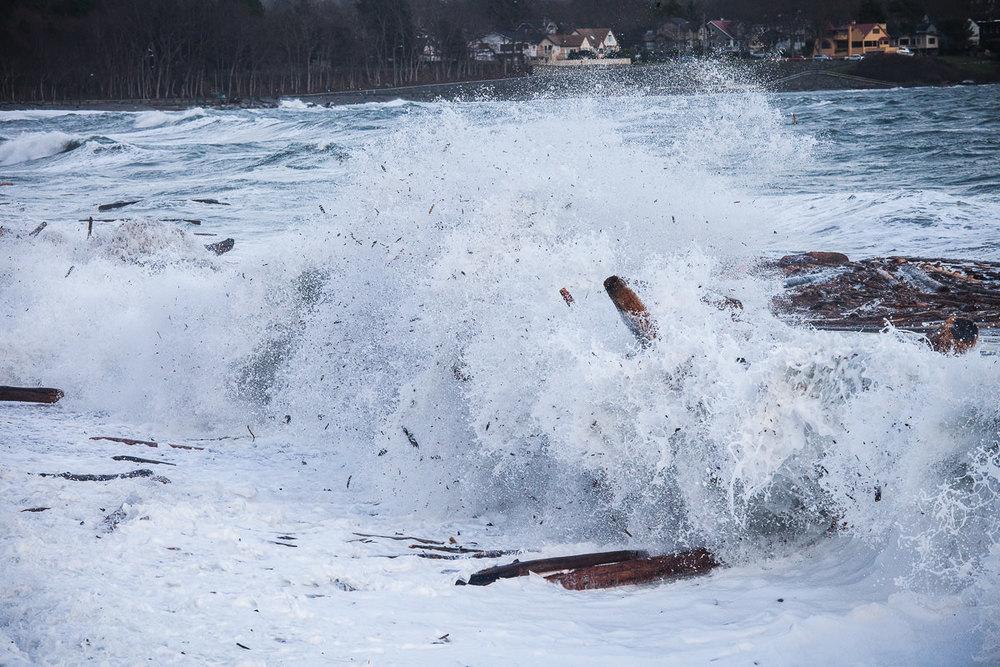 wind-storm-victoria-bc-tj-watt-334.jpg