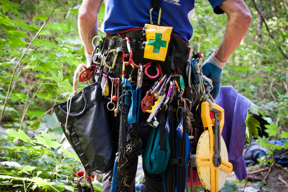carmanah-valley-tree-climbing-gear.jpg