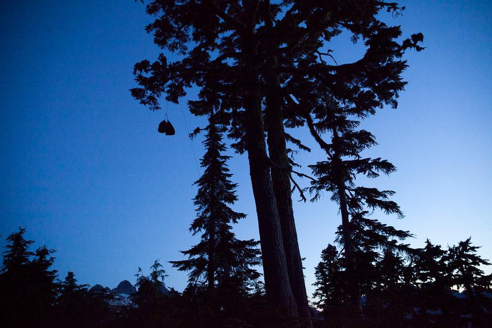 50-40-Peak-Vancouver-Island-BC-8.jpg