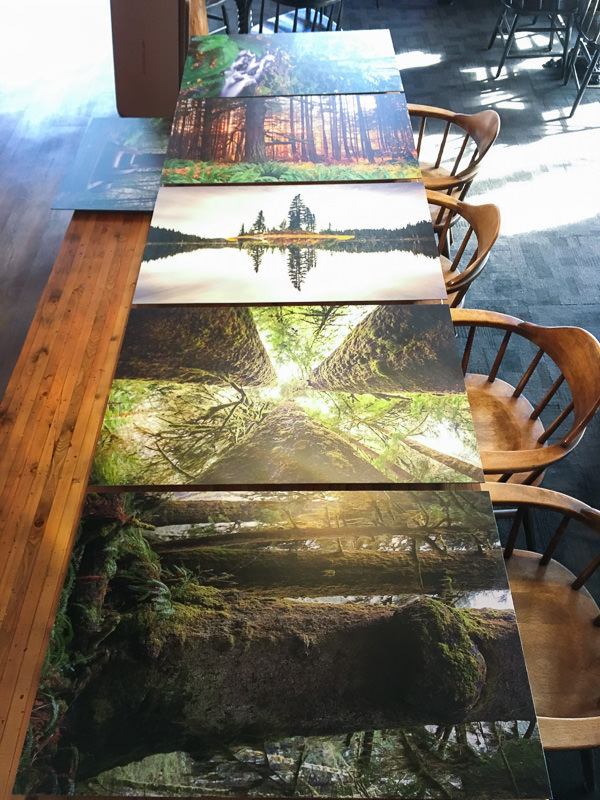 Fresh prints laid out and ready to hang!