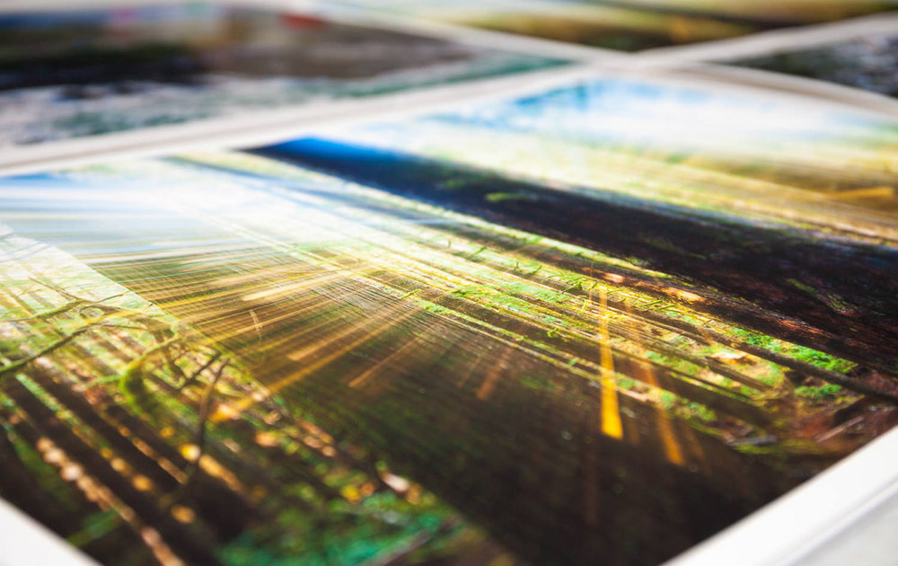 Fine-Art-Prints-TJ-Watt-1200px.jpg
