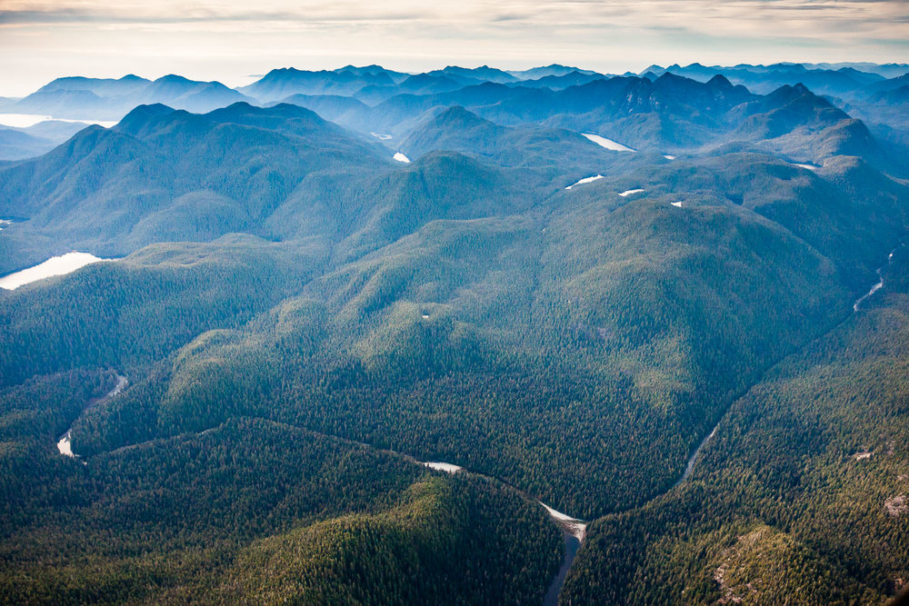 megin-talbot-river-clayoquot-sound.jpg