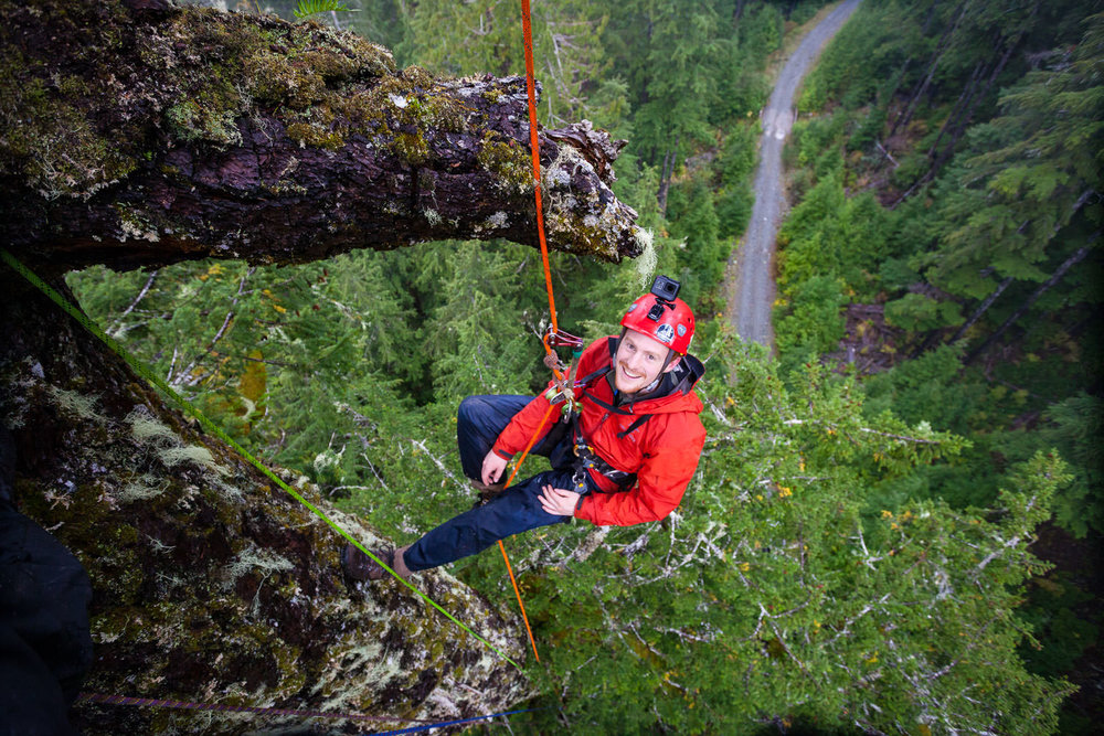 tj-watt-tree-climb-eden-grove-port-renfrew.jpg