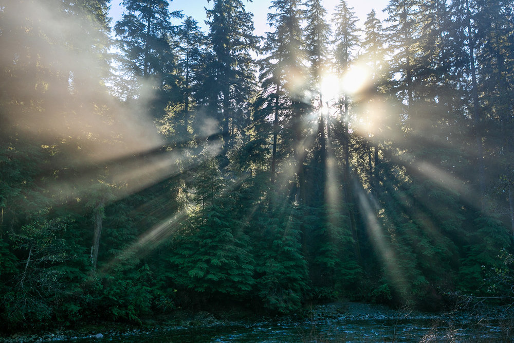 Loss-Creek-Port-Renfrew-Light-Rays-2.jpg