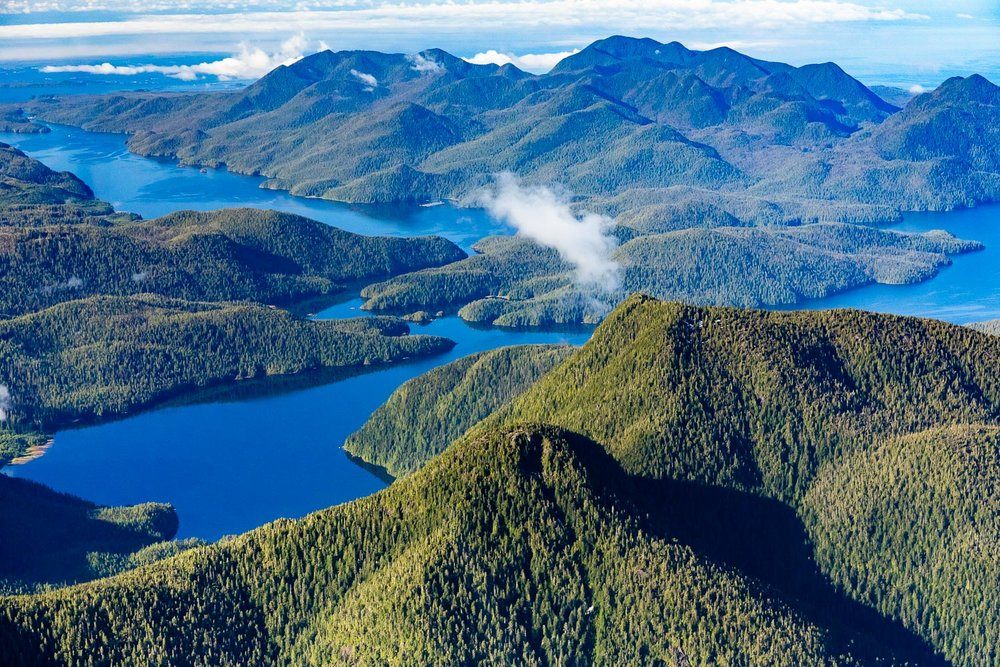 The view from a few thousand feet over Clayoquot Sound, looking west towards Obstruction and Flores Island. One thing you quickly notice when flying over Vancouver Island is just how pervasive logging roads and clearcuts are. Almost every direction you look, the landscape is scarred or altered. In only a few rare and special places can you can get a glimpse of the island the way it once was - carpeted from coastline to mountain top and back down again in ancient forests of every shade of shimmering green. Thankfully, the local Ahousaht First Nation have a Land Use Vision calling for protection of over 80% of the old-growth forests in their territory. May this view stay looking this way for many generations to come.